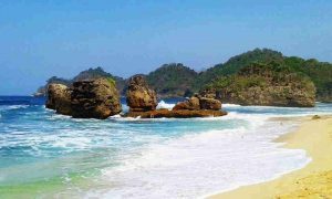 Travel Malang Jember